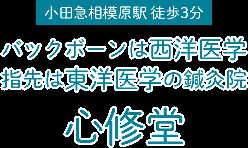 神奈川県座間市 小田急相模原駅徒歩3分 バックボーンは西洋医学 指先は東洋医学の鍼灸院 心修堂